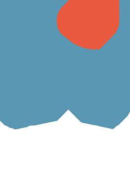 SNAPH-logo-webb-transparant-vit-text-49x65_a7560dcbb40d2c8d858fd182978e856d